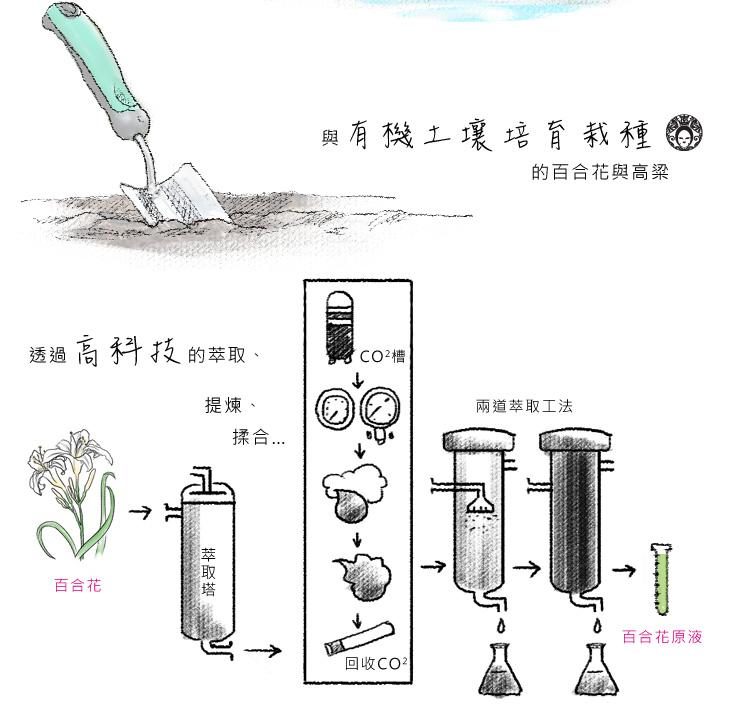 膜殿嚴選來自屏東無污染山泉水與有機土壤培育栽種的百合花與高粱