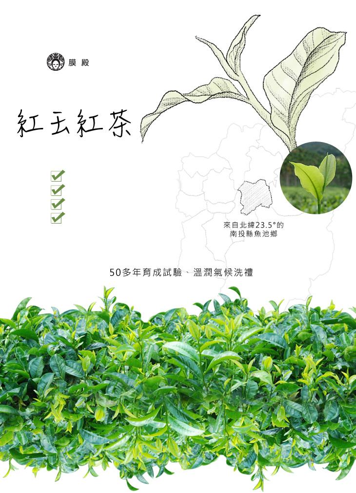 紅玉紅茶-台灣國寶.世紀之星