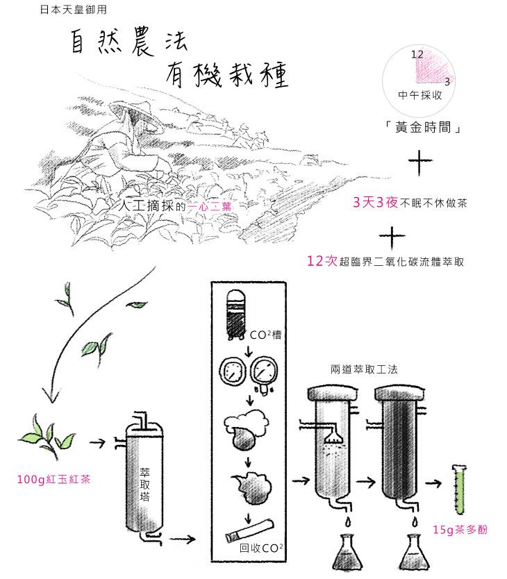 日本天皇御用-100%自然農法有機栽種