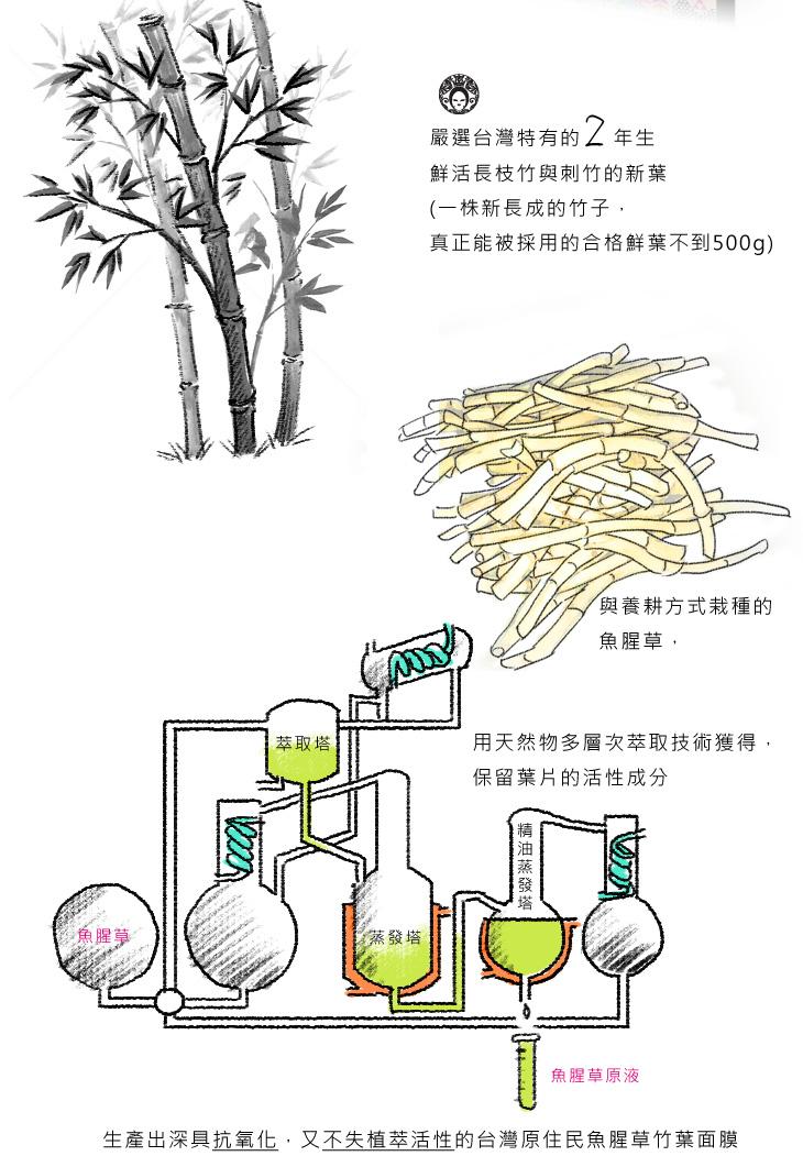 嚴選台灣特有的2年生鮮活長枝竹與刺竹的新葉(一株新長成的竹子,真正能被採用的合格鮮葉不到500g)用天然物多層次萃取技術獲得, 保留葉片的活性成分,生產出深具抗氧化,又不失植萃活性的台灣原住民魚腥草竹葉面膜