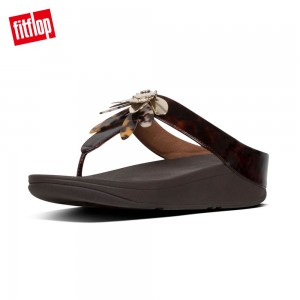 FitFlop CONGA DRAGONFLY TOE-THONGS (巧克力棕)