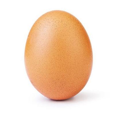 <p>網路奇聞!這顆蛋居然累積了 2300 萬次的讚,成為 IG 史上最多人按讚的貼文</p>