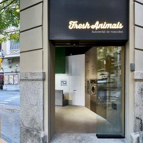 不願離開深愛的貓狗兒們?西班牙自助式寵物護理中心夠創意