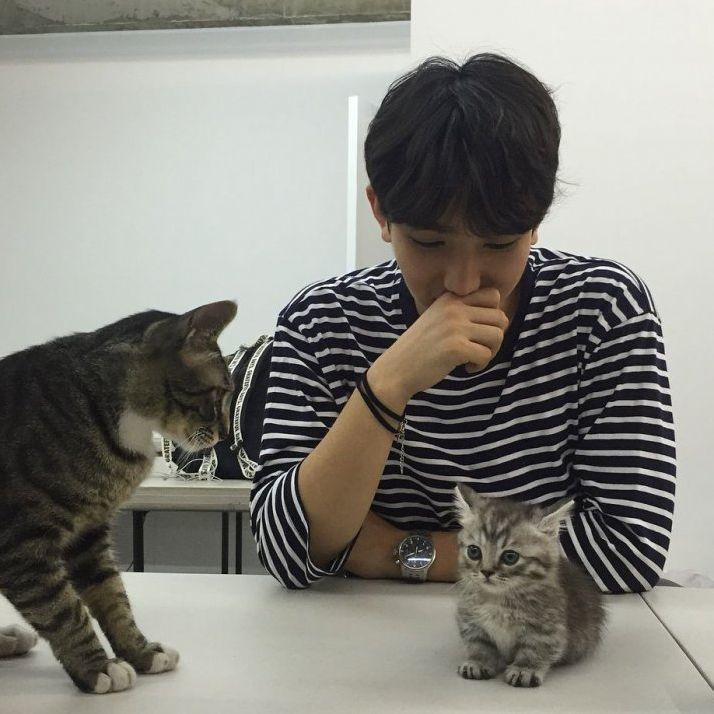 養貓貓的5大好處 科學證明貓奴很幸運!