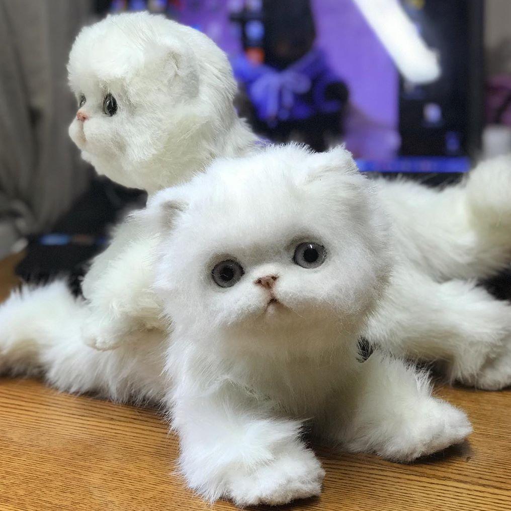 藝術家100%羊毛打造超可愛動物手作公仔