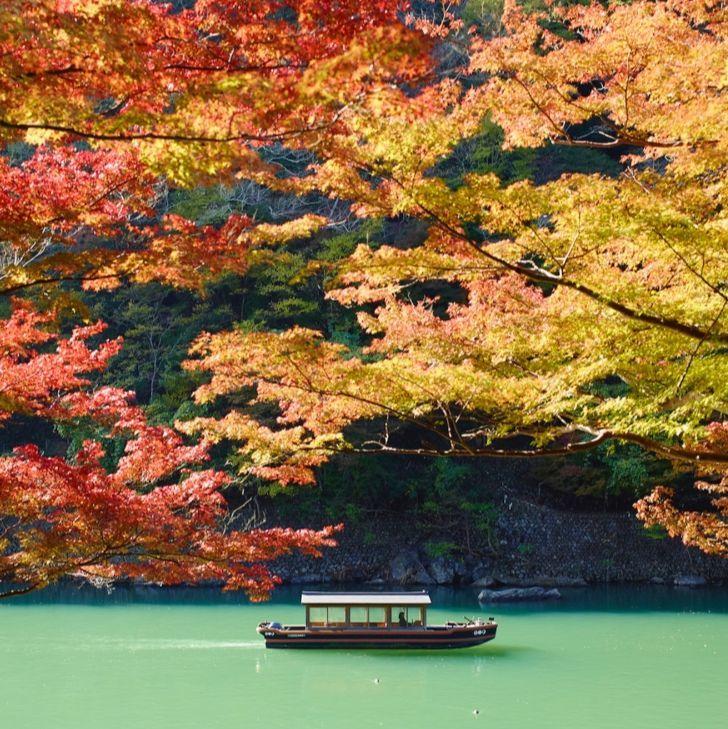欣賞紅葉、體驗道地特色料理!「日本賞楓季」5 間旅店締造最佳夢幻美景,享受不同型態的旅遊模式