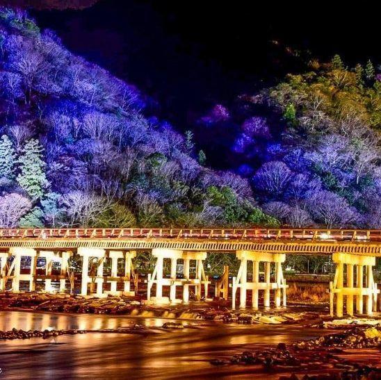 不只賞楓!2019必去京都嵐山花燈路晚上也很美!