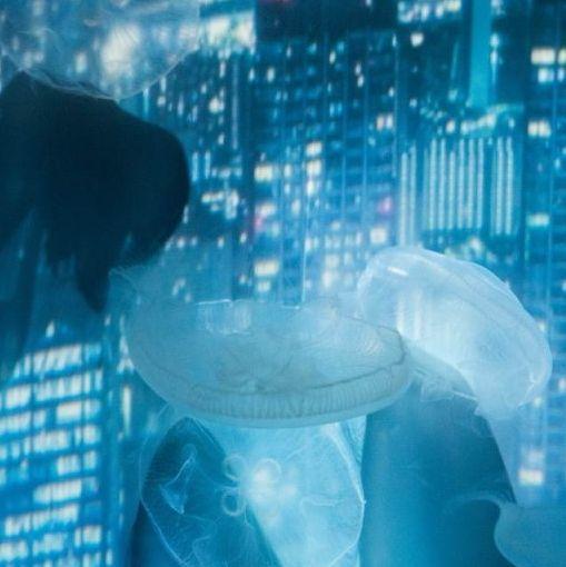 東京水族館期間限定!打卡必去「雪之水母」